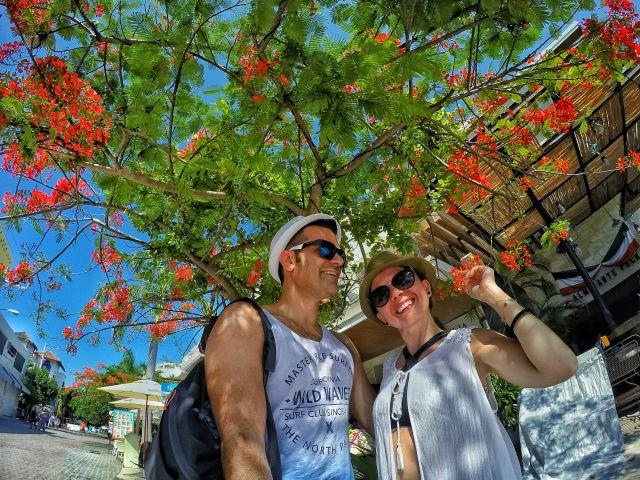meksika gezilecek yerler rehberi